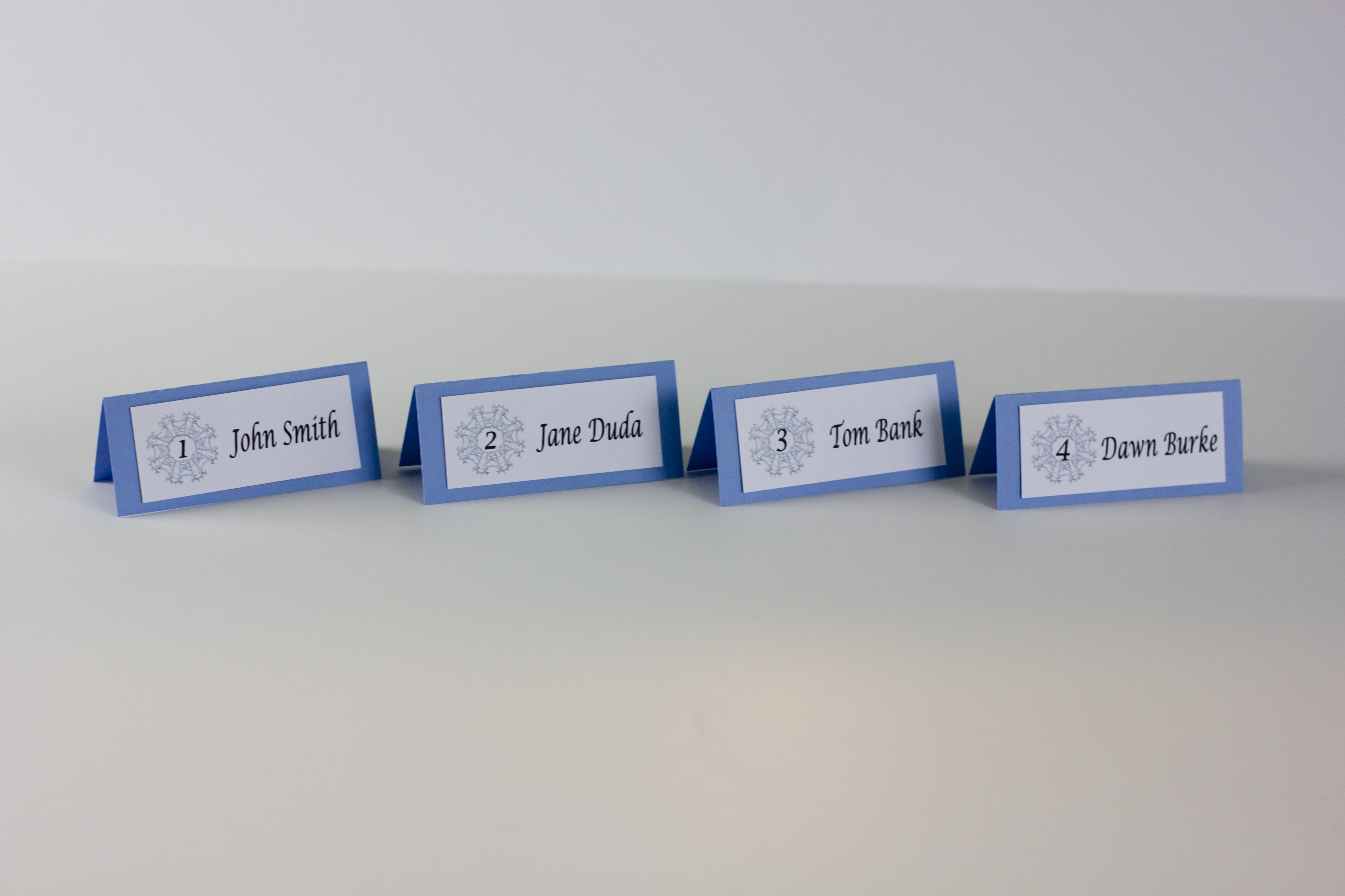 Winter Wedding Themed Place Cards